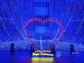 横浜クリスマス ドッグヤードガーデン