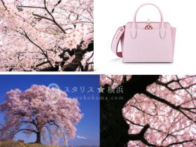ブルガリの「ブルガリ・ブルガリ アルバ バッグ」より日本限定 桜カラーのバッグが登場 2018 年 3 月、この度ブルガリが初めて四季をモチーフに手掛けた日本限定モデルのバッグが、優美な桜カラーで登 場します。 今やSAKURAとして、春の訪れを告げる美しい花が世界中の人々に愛されるようになった日本を象徴する樹木である 桜。四季をモチーフに、初めてブルガリが限定モデルを作り上げたインスピレーションが日本の桜であることは、ブルガ リのクリエーションがローマの街並みや建築物、美しい憧憬や自然だけではなく、かつて日本の美にインスパイア をうけたジュエリーの作り手であることを物語っています。 富と輝きを表現する刻印が施された古代ローマ帝国のコインをモチーフとしたペンダントをあしらった、実用的かつ エレガンスさも併せ持つ「ブルガリ・ブルガリ アルバ バッグ」コレクションから今春発売される日本限定のバッグには、 アイコニックなペンダントに上品な桜のモチーフが施され、またワイドなオリジナルショルダーストラップにも桜のオーナ メントが繊細にあしらわれたやさしい印象のデザインが魅力です。 桜の花言葉は「精神の美」 、「優雅な女性」。ブルガリが日本女性へ贈る特別な桜