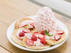 EGGS 'N THINGS JAPAN株式会社(本社:東京都港区 代表取締役 荻野忍)は、Eggs 'n Things「ジャズドリーム長島店」「お台場店」の2店舗限定で春にぴったりの「花」をモチーフにしたパンケーキの販売を開始いたします。 ※販売期間:ジャズドリーム長島店3月10日(土)~4月8日(日)/お台場店 3月16日(金)~4月8日(日)