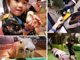 【みなとみらい】オービィ横浜で動物とふれあってきました!屋内で快適に動物園気分♪親子で楽しめる横浜おすすめエンタテイメント話題スポットの体験レポート ~アクセス抜群の商業施設で動物とふれあえる人気パーク「オービィ横浜」~