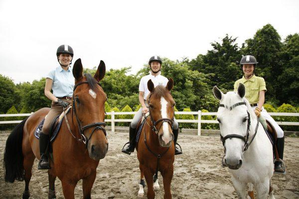 アバロンヒルサイドファーム 乗馬体験 横浜 乗馬