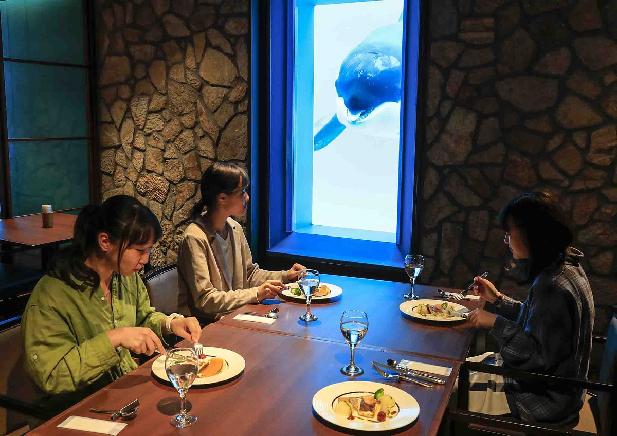"""週末は""""水族館女子会""""を楽しもう!夜の水族館探検やシャチを見ながら食事ができるレストランでセミコースを堪能女性限定の特別体験プラン 「レディースナイトステイ」開催 グランビスタ ホテル&リゾート 鴨川シーワールド"""