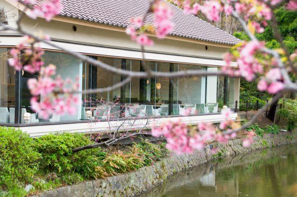 創業三百余年の歴史をもつ 葉山の老舗料亭『日影茶屋』が監修した茶寮