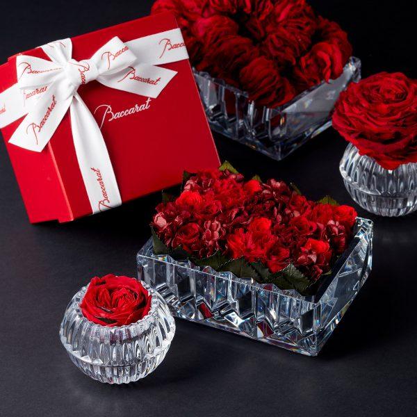 """クリスタルのラグジュアリーブランド「バカラ」のクリスタルに、ニコライ バーグマン フラワーズ & デザインのプリザーブドフラワーを施したアイテムを11月26日(火)よりエストネーションにて数量限定発売いたします。大切な人や自分へのご褒美、ホリデーギフトとして最適です。 """"Baccarat × Nicolai Bergmann Flowers & Design"""" <限定プリザーブドフラワー(ルクソール)>"""