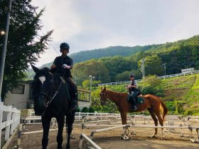 乗馬無料体験 クレイン神奈川