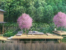 日本の春といえば、お花見。お花見の自粛が呼びかけられている中ですが、星野リゾート(所在地:長野県軽井沢町/代表:星野佳路)では、1日1組限定でお花見を楽しめる旅を提供します。枝垂れ桜が咲くテラスで一日中自由気ままに愛でる花見や、敷地内に咲くしだれ桜をひとり占めできる花見、母娘(おやこ)二人旅に花を添えるカーネーションをテーマにした滞在など、賑わいから離れつつも、花を満喫できます。