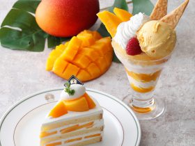 ホテルニューグランド 宮崎県産マンゴーショートケーキ&マンゴーパフェ コーヒーハウス ザ・カフェ