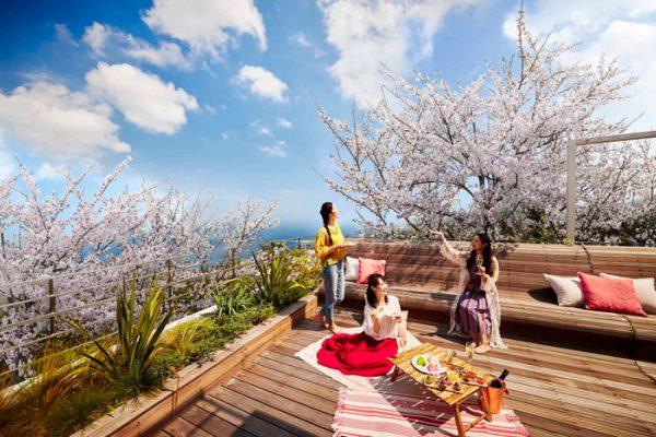 【リゾナーレ熱海】オーシャンビューのテラスでお花見する宿泊プラン「海と桜のプライベートお花見ステイ」が登場|期間:2021年3月21日~4月5日