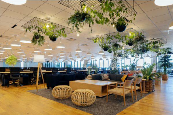 クックパッド株式会社 本社移転のお知らせ 「街やつくり手と一緒に、毎日の料理を楽しみにしていく場所」を目指し恵比寿から横浜へ本社を移転